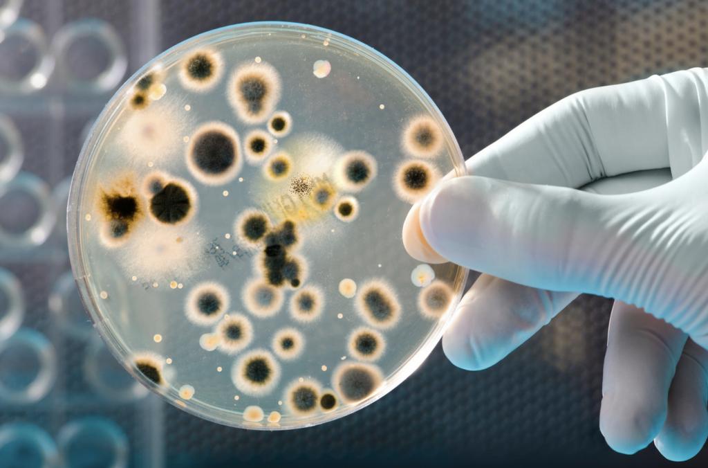 airborne bacteria